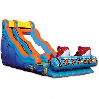 Water Slide - Big Kahuna
